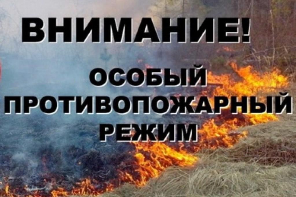 Противопожарный режим картинки благоухающие