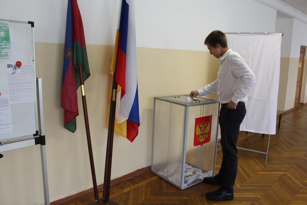 применению картинка выборы самоуправления оригинальный намордник превратит