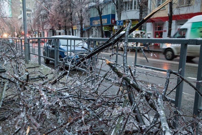 Москва взбесила Шевчука Собеседник